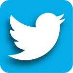 Twitter Botton WEB PAGE